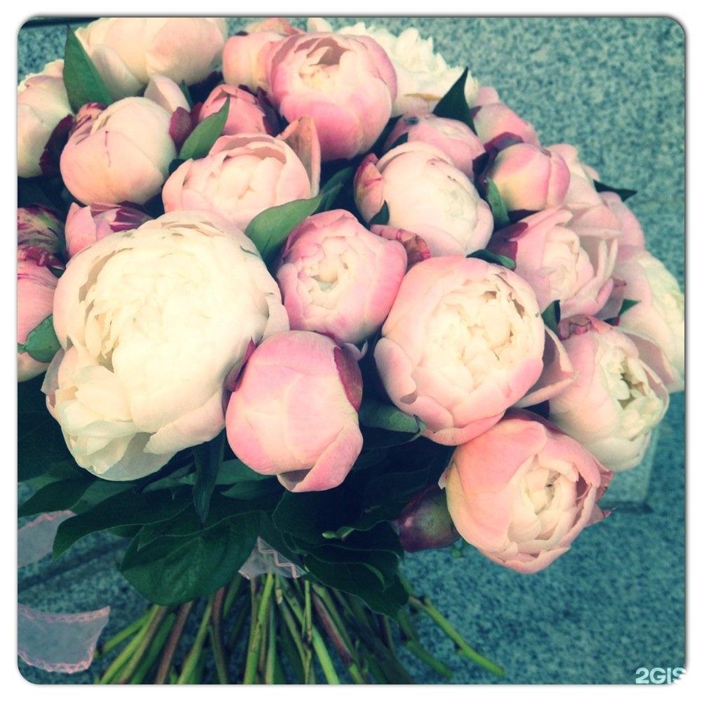 Бутоны и лепестки студия цветов и подарков 43
