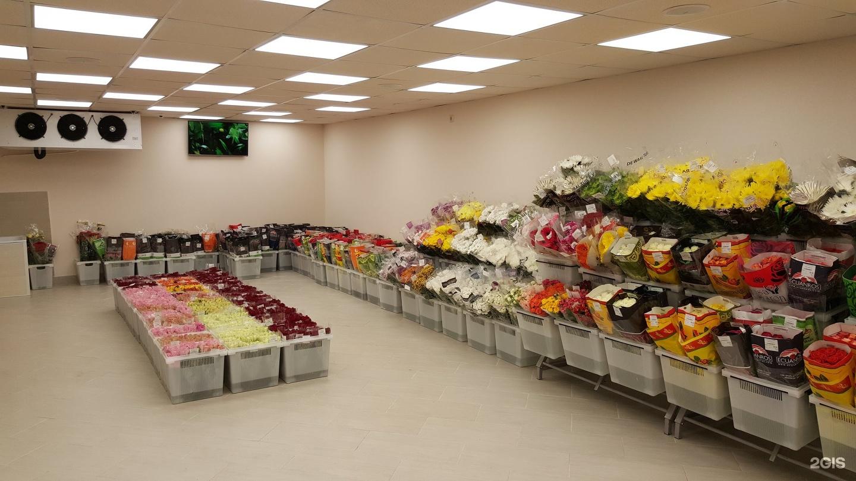 Фирмы оптовая продажа цветов киеве, букеты цветов