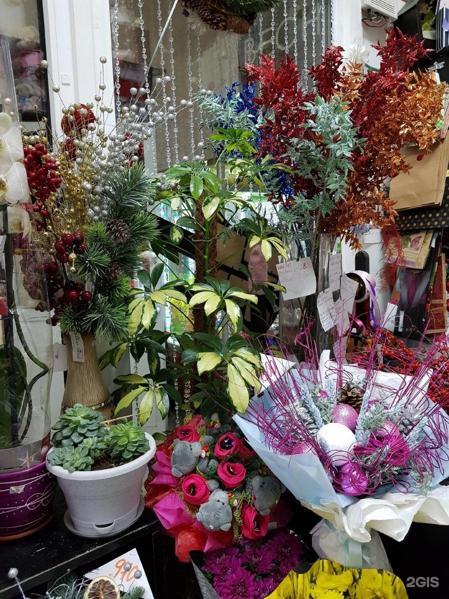 Оптовый магазин цветов в балашиха, цветов