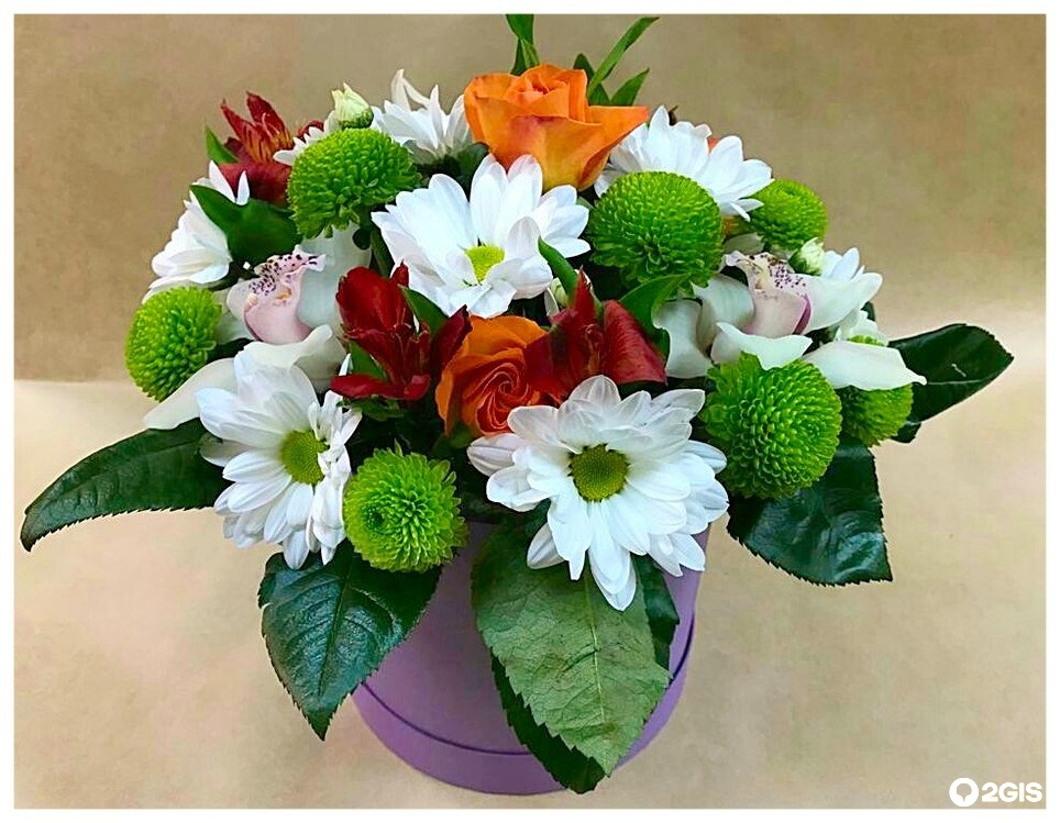 Салон цветов тройка кострома, цветов предлагает цветы