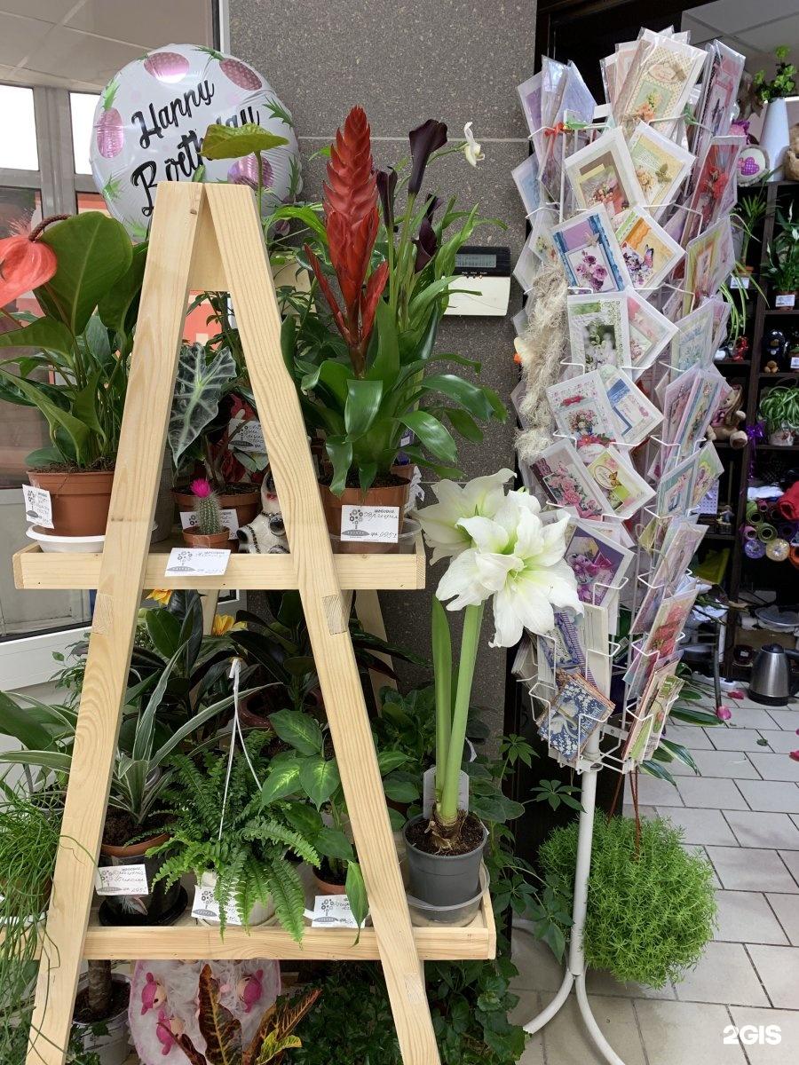 Цветочный магазин клумба в казани, цветов