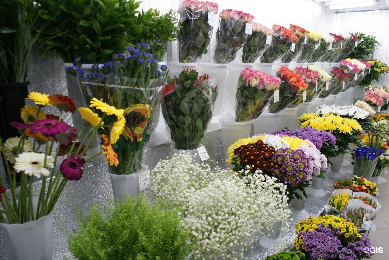 Цветы живые оптом курская