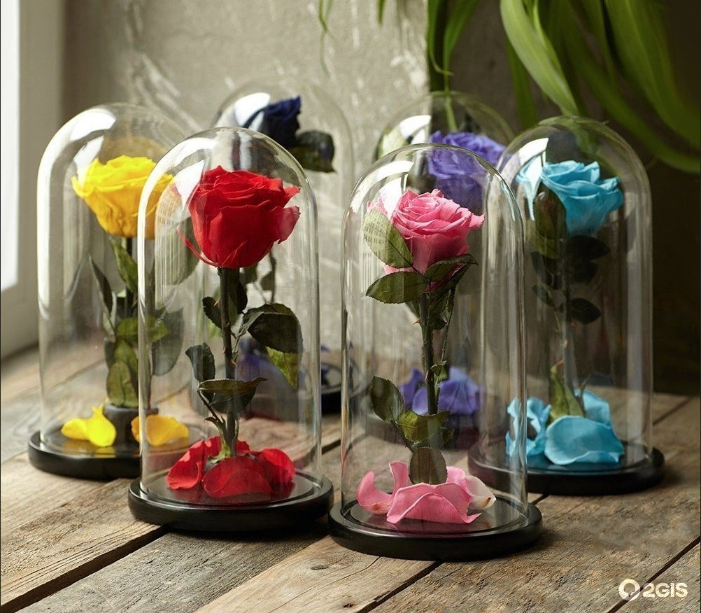 Красивые, цветы в капсула интернет магазин